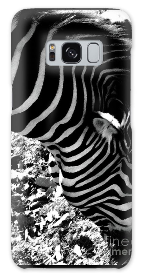 Zebra Galaxy S8 Case featuring the photograph Zebra2 by September Stone