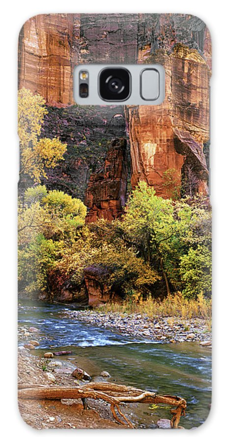 4x5 Galaxy S8 Case featuring the photograph Zion National Park 57 by Fred Newman