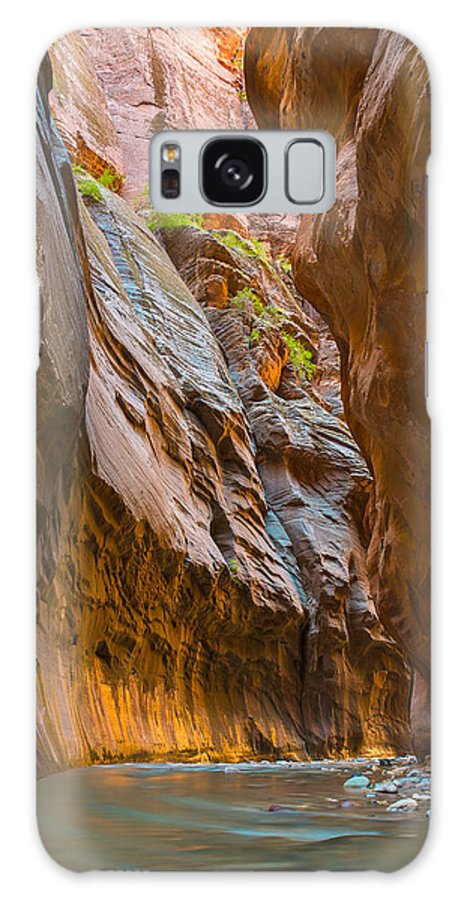 Fine Art Galaxy S8 Case featuring the photograph Zions Golden Light by Andre Distel
