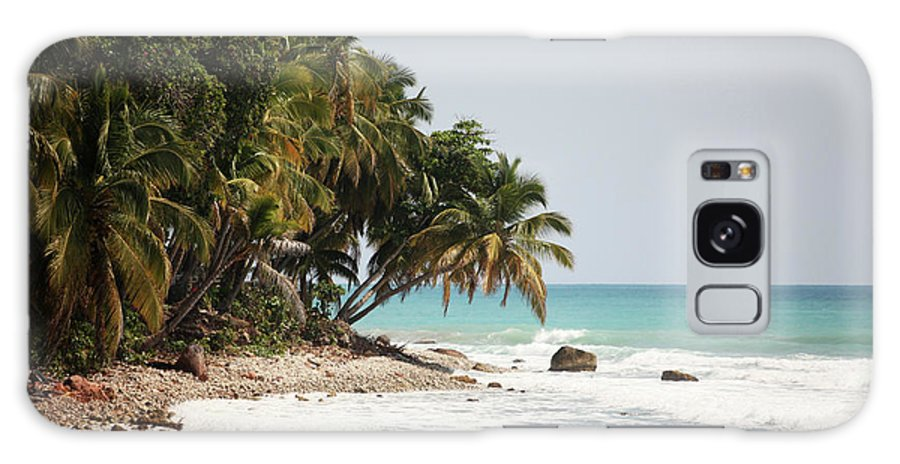 Tropical Tree Galaxy Case featuring the photograph Beach In Haiti by 1001nights