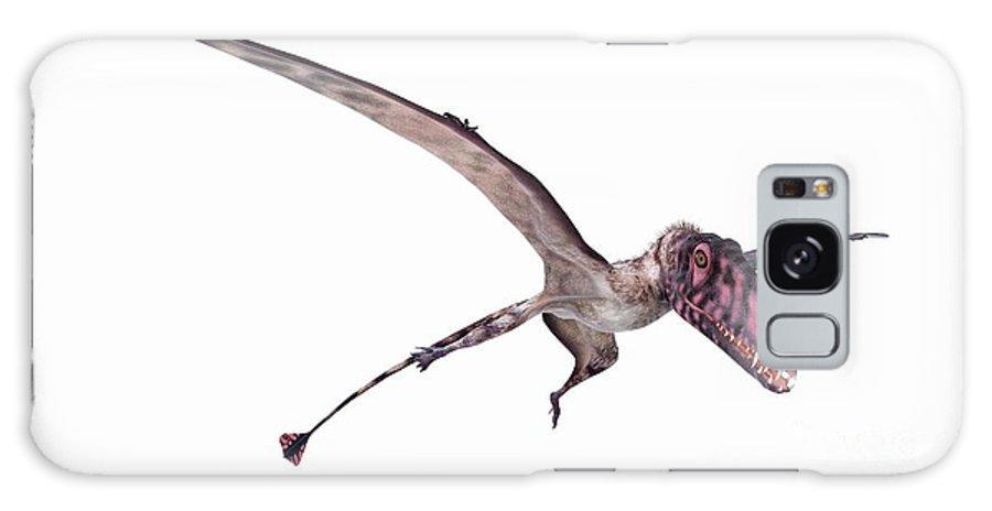 Dinosaur Galaxy Case featuring the photograph Illustration Of A Dimorphodon by Sebastian Kaulitzki/science Photo Library