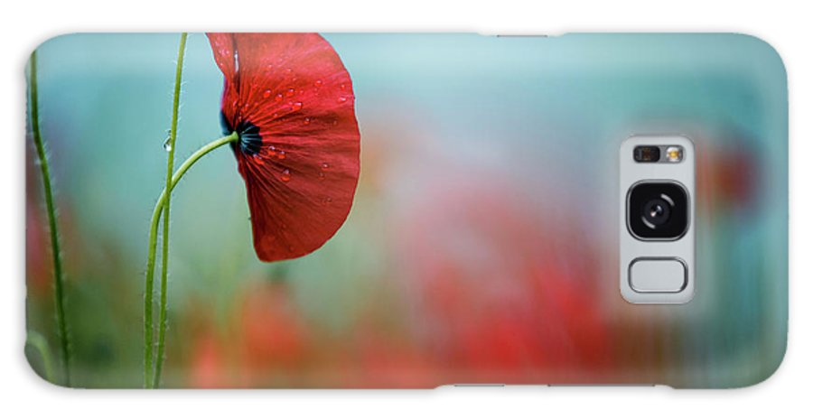 Poppy Galaxy Case featuring the photograph Red Corn Poppy Flowers by Nailia Schwarz