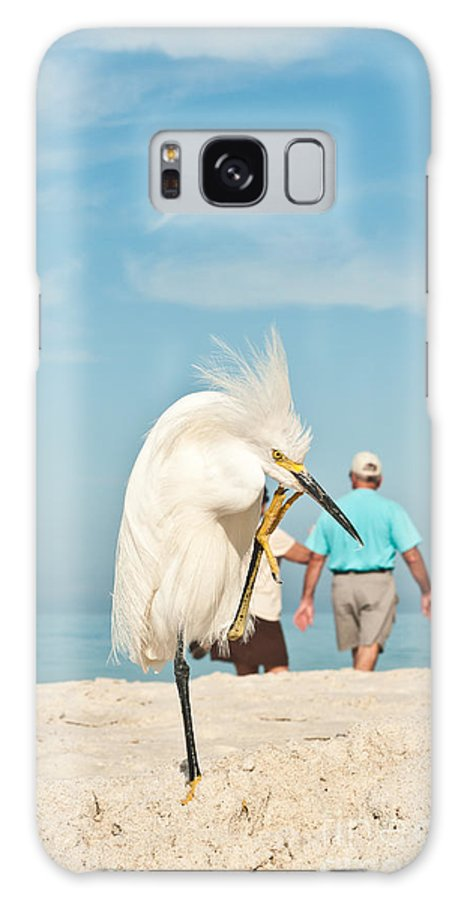 Egret Galaxy S8 Case featuring the photograph Snowy Egret Standing On Sandy Beach On by Robert F. Leahy