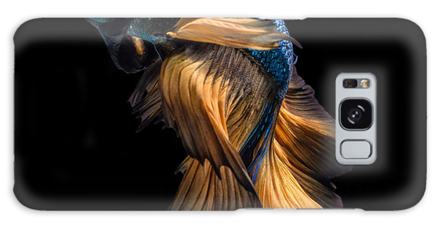Fancy Galaxy S8 Case featuring the photograph Colourful Betta Fish,siamese Fighting by Nuamfolio