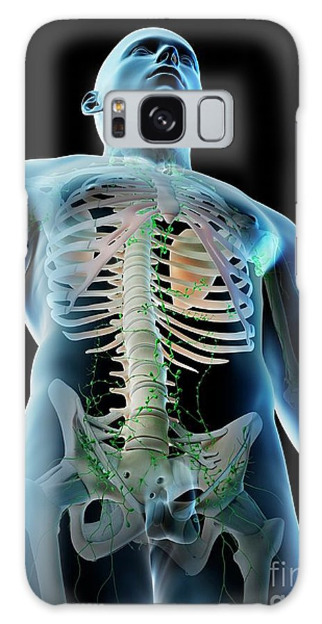 3d Galaxy Case featuring the photograph Lymphatic System Of The Upper Body by Sebastian Kaulitzki/science Photo Library