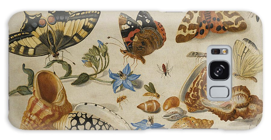 17th Century Art Galaxy S8 Case featuring the painting A Swallowtail, A Red Admiral And Other Insects With Shells And A Sprig Of Borage by Jan van Kessel the Elder