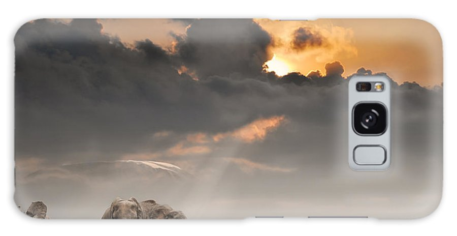 Big Galaxy Case featuring the photograph African Sunset With Elephants by Oleg Znamenskiy