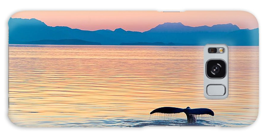 Big Galaxy Case featuring the photograph Alaska Whale Tail Sunset by Tonyzhao120