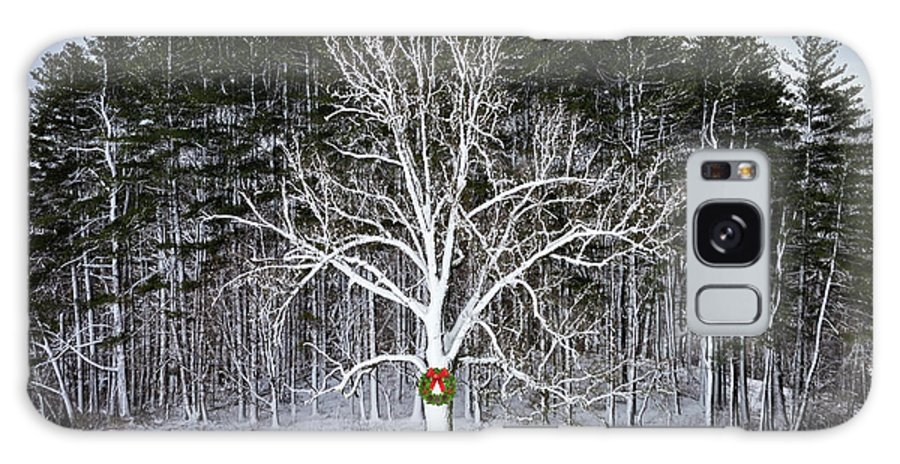 Tree Galaxy S8 Case featuring the photograph Appleton Tree In Holiday Dress by David Stone