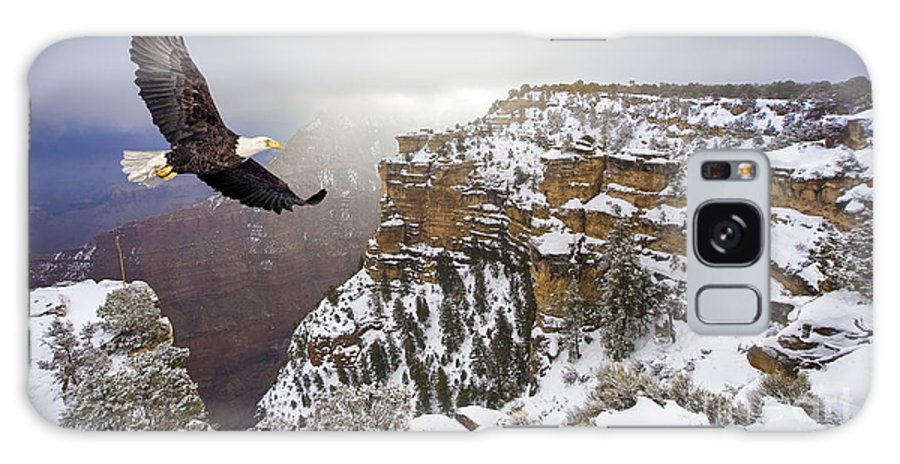 Feather Galaxy Case featuring the photograph Bald Eagle Flying Above Grand Canyon by Steve Collender