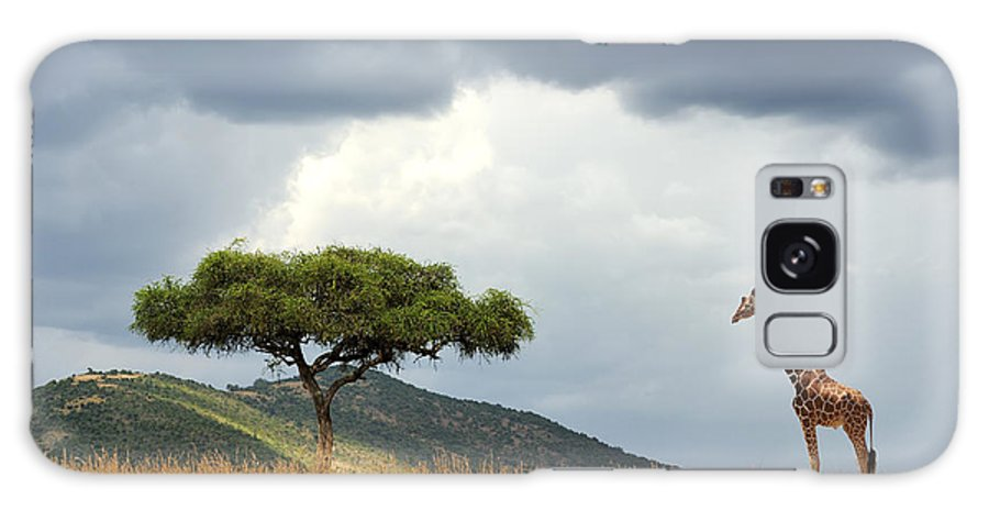 Safari Galaxy Case featuring the photograph Beautiful Landscape With Nobody Tree by Volodymyr Burdiak