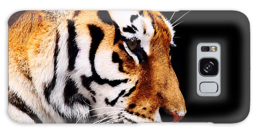 Big Galaxy Case featuring the photograph Big Tiger On A Black Background by Anp