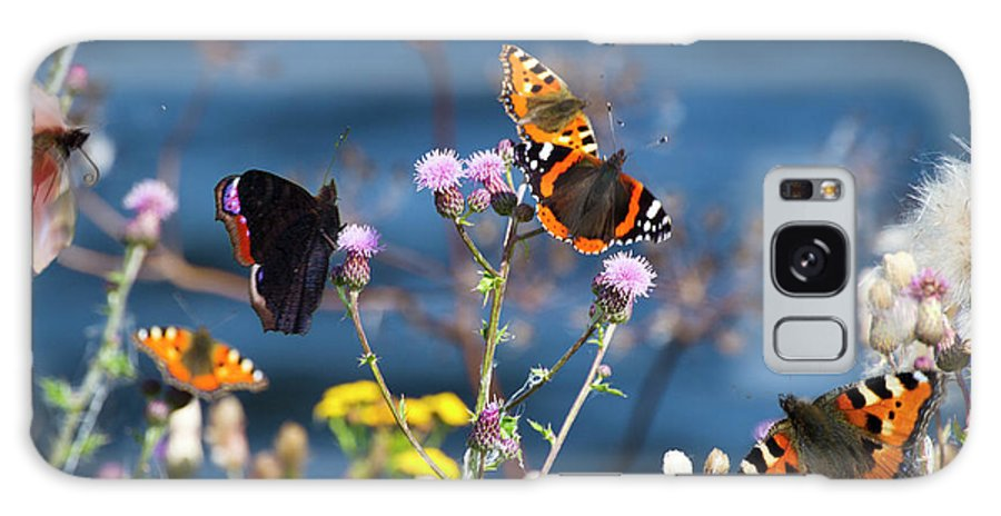 Insect Galaxy Case featuring the photograph Butterflies Sitting On Flower by Www.wm Artphoto.se