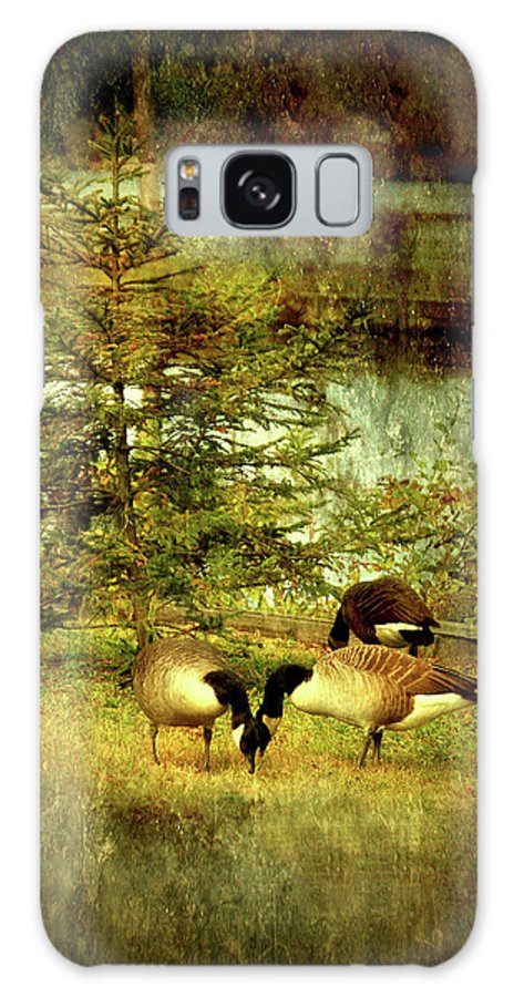 Autumn Galaxy S8 Case featuring the photograph By The Little Tree - Lake Carasaljo by Angie Tirado