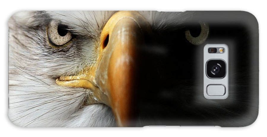 Feather Galaxy S8 Case featuring the photograph Eagle Close Up Portrait by Ismael Jorda