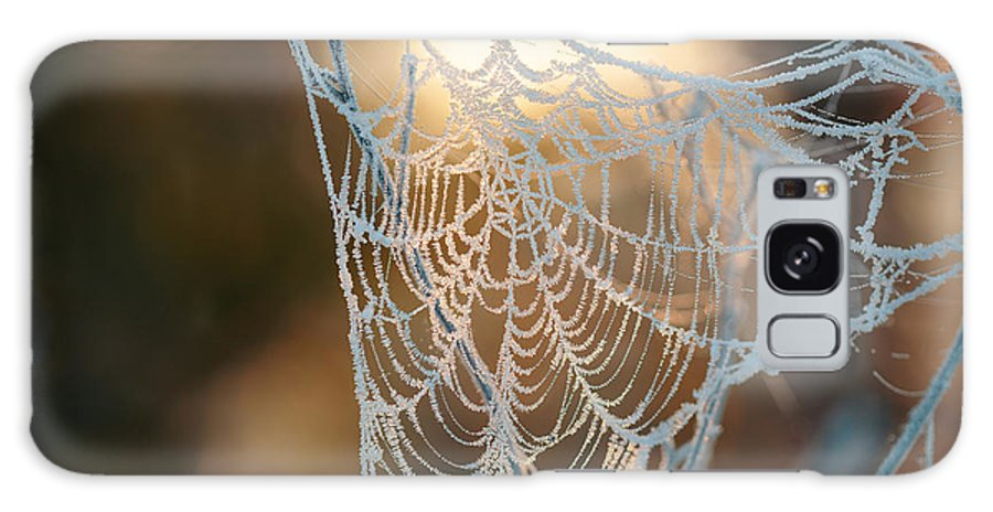 Through Galaxy Case featuring the photograph Frozen October Morning Cobwebs by Stone36