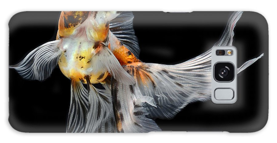 Big Galaxy S8 Case featuring the photograph Goldfish Isolated On Black Background by Bluehand