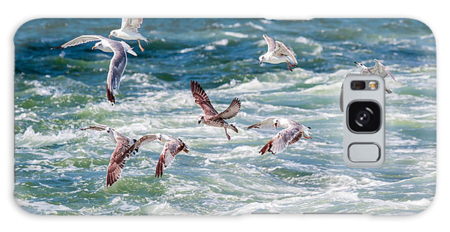 Sea-gull Galaxy Case featuring the photograph Group Of Seagulls Over Sea by Muratart