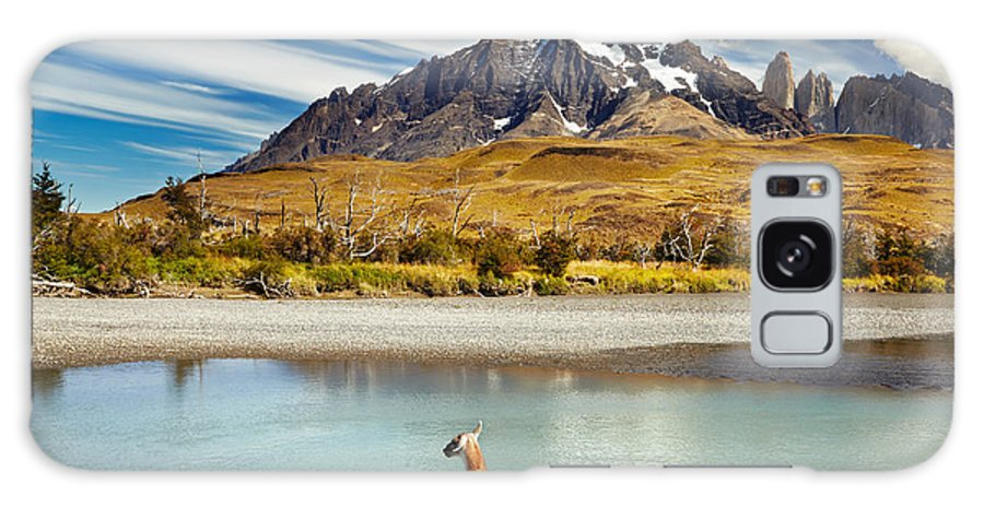 Guanaco Galaxy S8 Case featuring the photograph Guanaco Crossing The River In Torres by Dmitry Pichugin