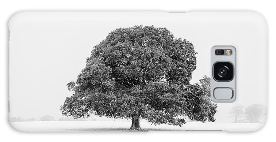 Scenics Galaxy Case featuring the photograph Lone Holm Oak Tree In Snow, Somerset, Uk by Nick Cable