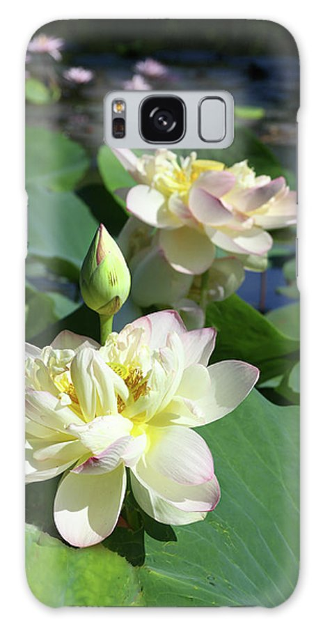 Lotus Galaxy Case featuring the photograph Lotus Design Two by John Lautermilch