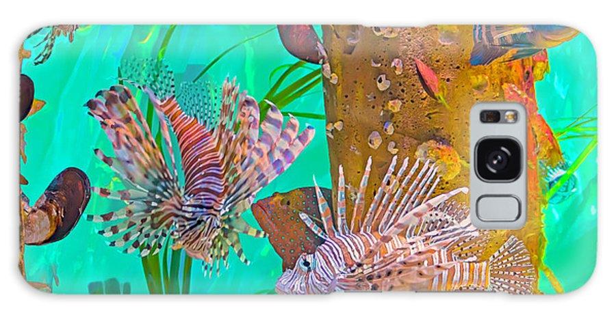 Lionfish Galaxy Case featuring the photograph Maintenance-free Aquarium by Banyan Ranch Studios