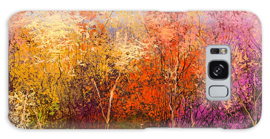 Paint Galaxy Case featuring the digital art Oil Painting Landscape - Colorful by Pluie r