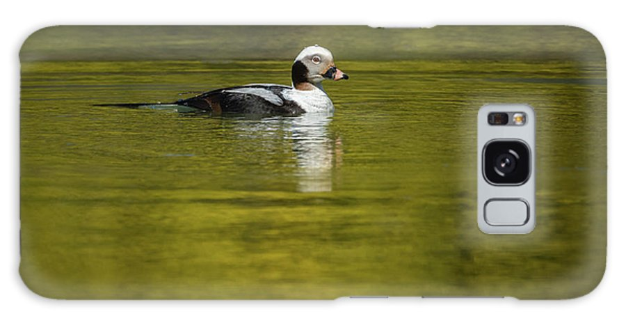 On A Golden Pond Galaxy Case featuring the photograph On A Golden Pond by Todd Henson