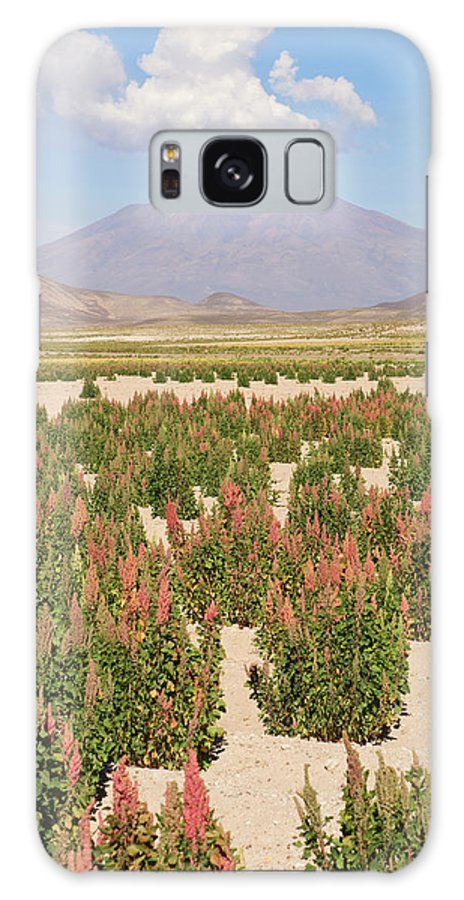 Scenics Galaxy Case featuring the photograph Quinoa Field by Gabrielle Therin-weise