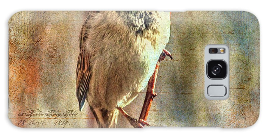 Sparrow Galaxy S8 Case featuring the photograph Sparrow Series 11 by Janice Pariza