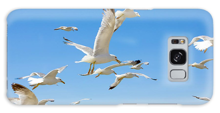 Greek Galaxy S8 Case featuring the photograph Swarm Of Sea Gulls Flying Close To The by Smoxx