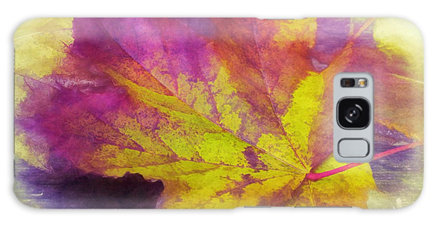 Nature Galaxy S8 Case featuring the photograph The Fall by Jean OKeeffe Macro Abundance Art