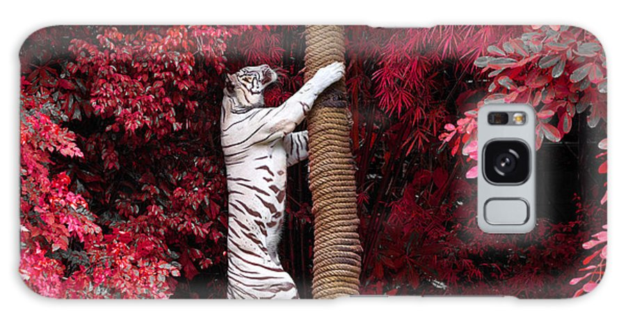 Big Galaxy S8 Case featuring the photograph The White Tiger by Jeep2499