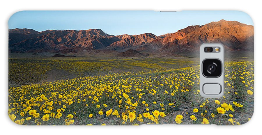 Usa Galaxy S8 Case featuring the photograph Wildflower Super Bloom In Spring, Death by Phitha Tanpairoj