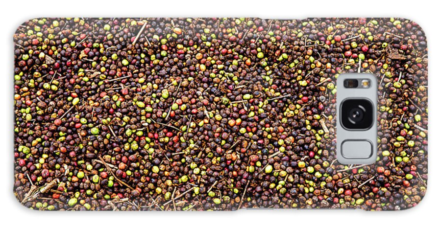 Coffee Grains Galaxy Case featuring the photograph Coffee Beans Drying by European School