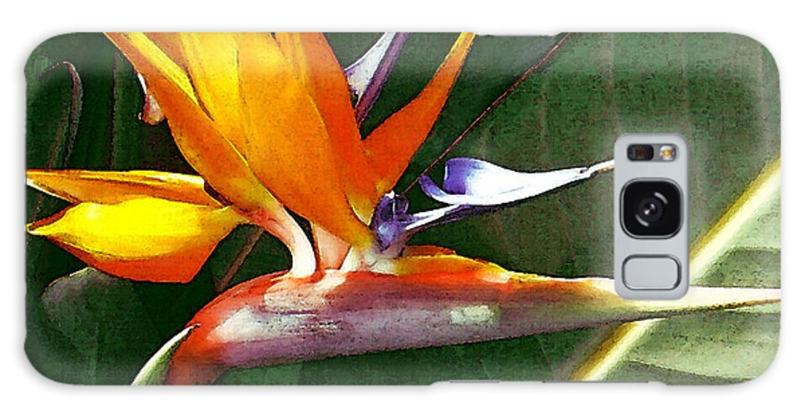 Bird Of Paradise Galaxy S8 Case featuring the photograph Crane Flower by James Temple