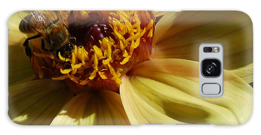 Flower Galaxy S8 Case featuring the photograph Honey Bees at Work by Suzanne Gaff