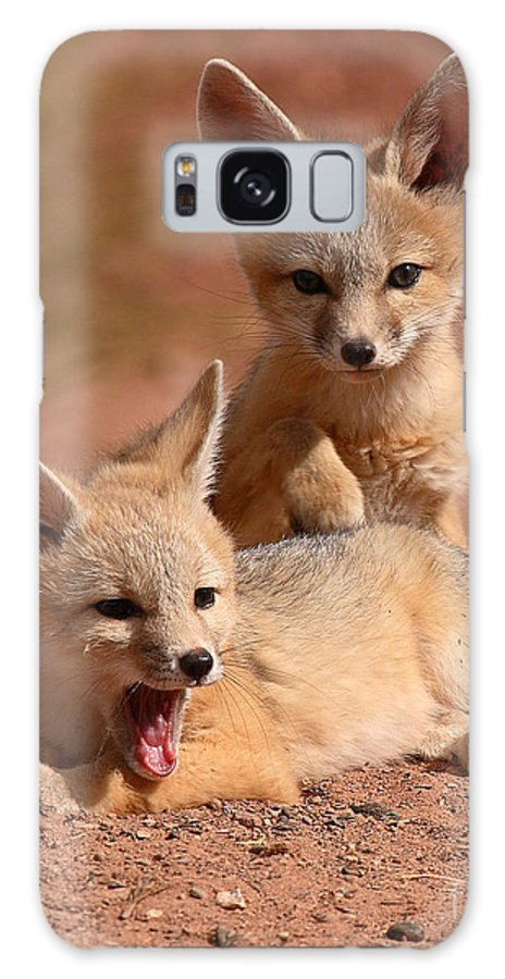 Fox Galaxy S8 Case featuring the photograph Kit Fox Twin Pups by Max Allen