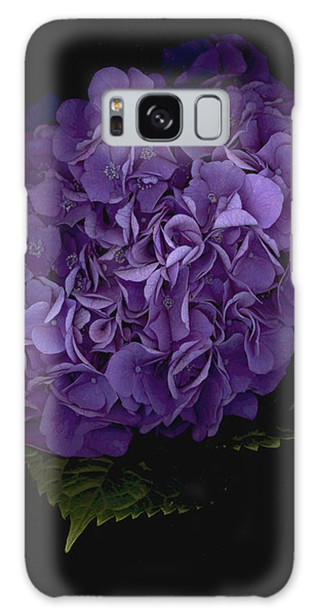 Hydrangea Galaxy S8 Case featuring the photograph Out of the Shadows by Suzanne Gaff