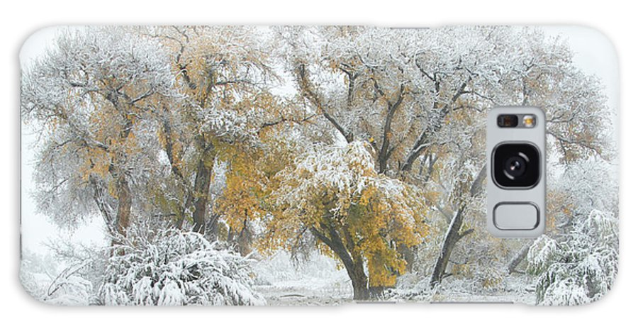 Winter Galaxy Case featuring the photograph Quite Winter Beauty by Zayne Diamond Photographic