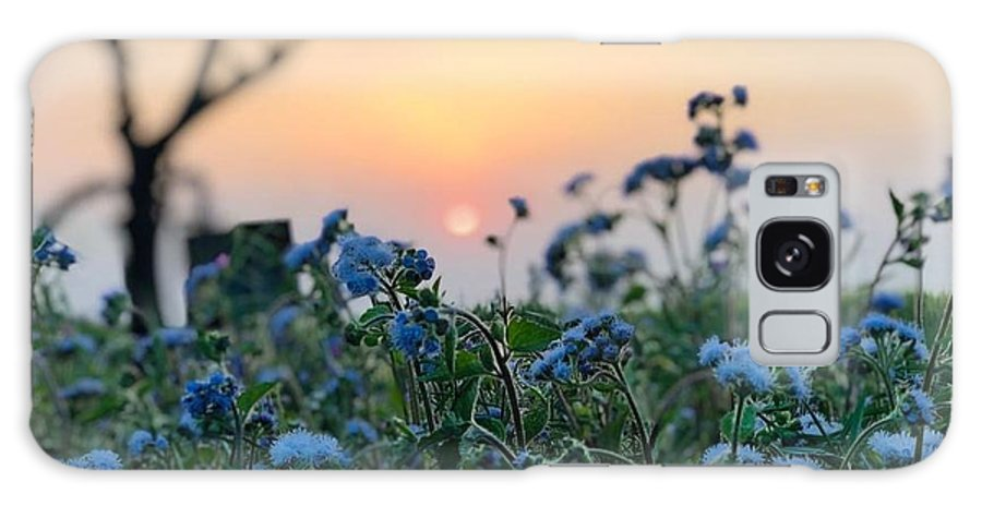 Flowers Galaxy Case featuring the photograph Sunset Behind Flowers by Prashant Dalal