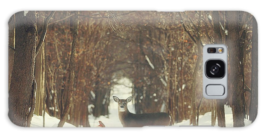 Snow Galaxy Case featuring the photograph The Forest of Snow White by Carrie Ann Grippo-Pike