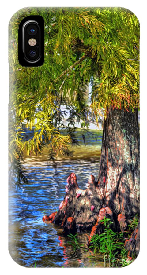 Cypress Tree IPhone X Case featuring the photograph Cypress Tree by Savannah Gibbs