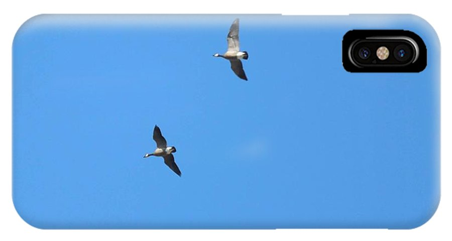 Ducks IPhone X Case featuring the photograph Formation Flight by Jean Slay-Gueths