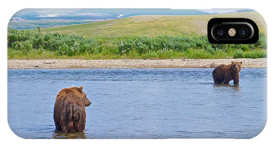 Grizzly Bears Looking At Each Other In Moraine River IPhone X Case featuring the photograph Grizzly Bears Looking At Each Other In Moraine River In Katmai Np-ak by Ruth Hager