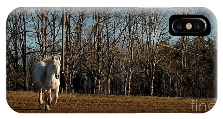 Horse IPhone X Case featuring the photograph Hi by Rabiah Seminole