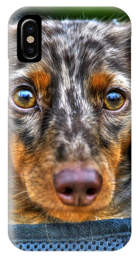 Michael Frank Jr IPhone X / XS Case featuring the photograph 0054 Puppy Dog Eyes by Michael Frank Jr