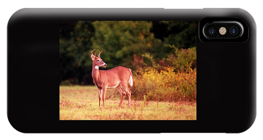 Deer IPhone X Case featuring the photograph 070406-58 by Mike Davis
