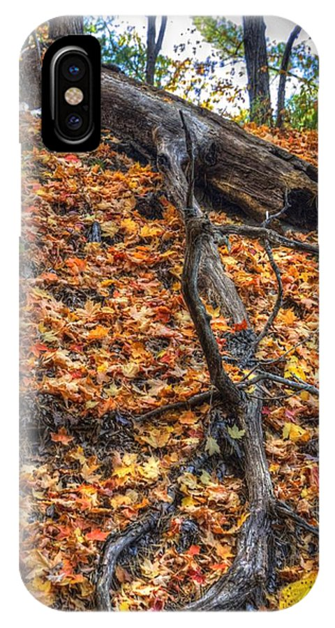 Fall IPhone X Case featuring the photograph Woods Scene by Patrick Warneka
