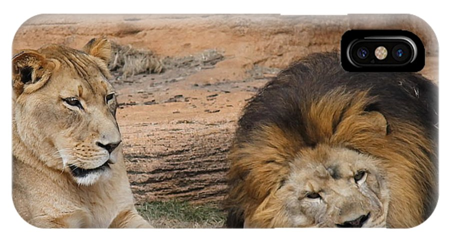 Lion IPhone X Case featuring the photograph African Lion Couple 3 by Cathy Lindsey